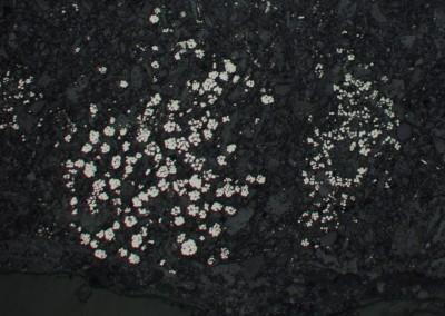 Framboidal pyrite