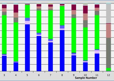 Bulk Mineral Analysis
